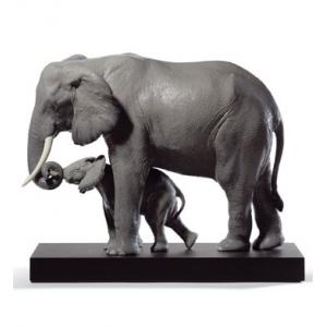 Показывая путь (слоны)