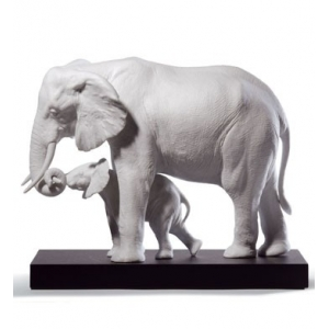 Показывая путь (слоны белые)