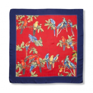 Scarf in 100% silk, Parrots, color red with navy bordure, 90x90 cm