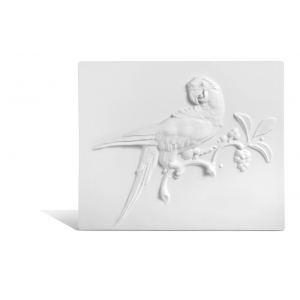 Parrot Wall Plates