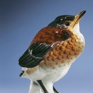 Blackbird, H 11 см