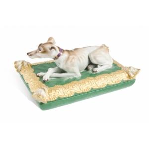 Greyhound on box