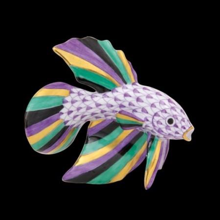 Бойцовая рыба (betta fish)