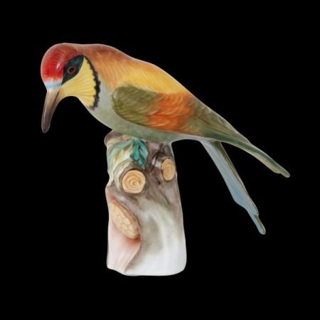 Птица-пчелоед