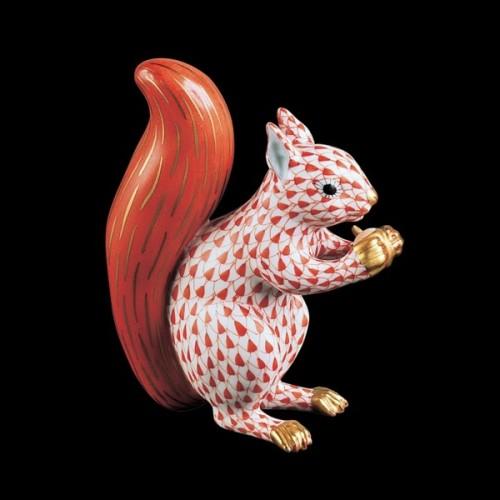 Красная белка