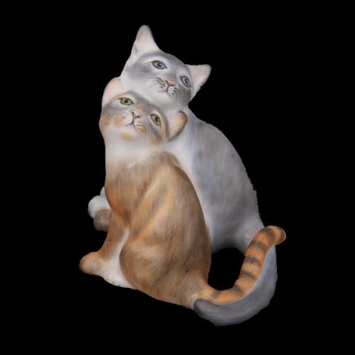 Пара котят
