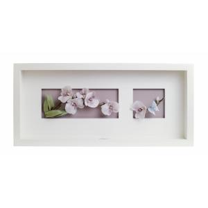 Орхидеи (рамка)