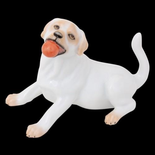 Лабрадор с мячом